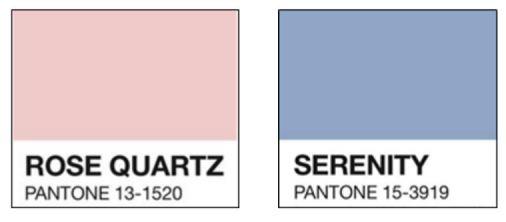 Panetone Colours
